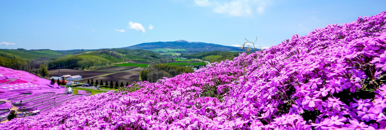 ひがし北海道 冬から春へ季節を楽しむ旅